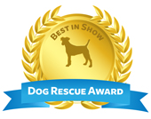 dog_rescue_award