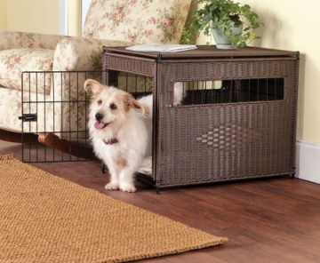 puppy_crate_training